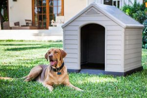 Caseta para perro Ikea | Mejores casas para perros Ikea