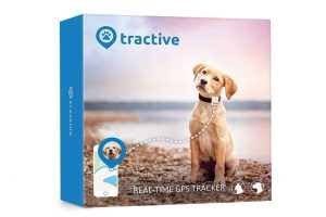 GPS para perros | Los mejores localizadores GPS para perros